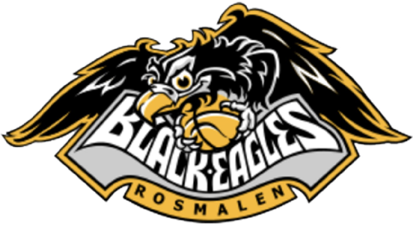 logo black eagleskopie